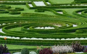Ogród w stylu naturalnym