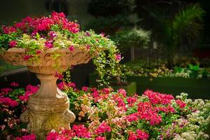 Przydomowa zieleń, czyli ogród idealny