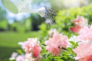Dobieranie ozdób ogrodowych